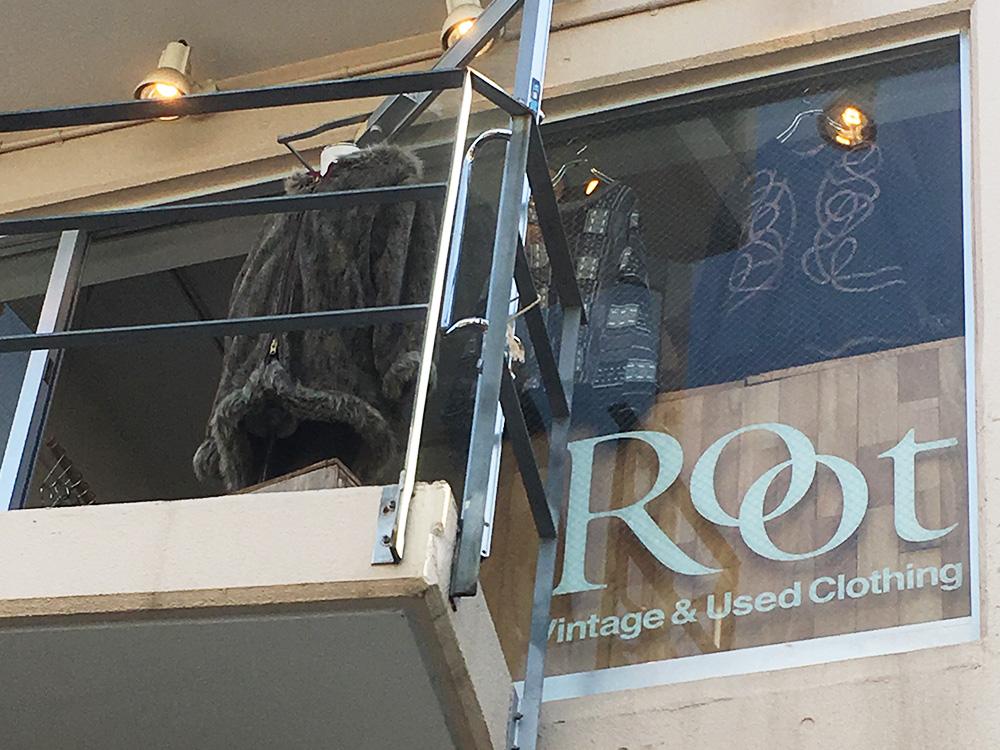 Root │ 原宿